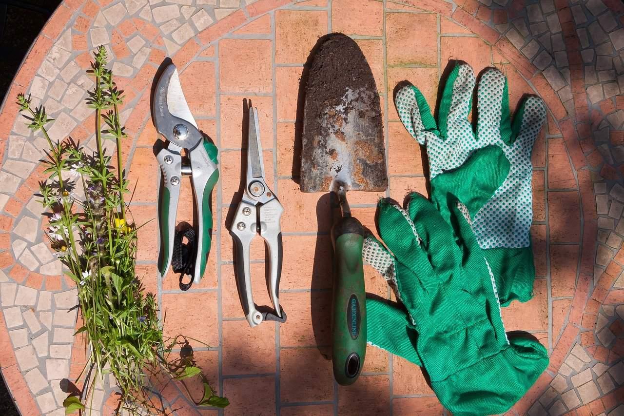 Balcony garden gifts