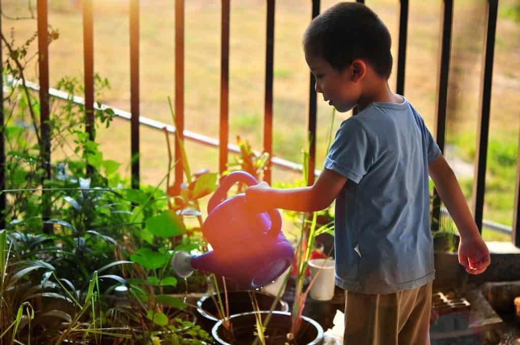 Balcony garden watering system