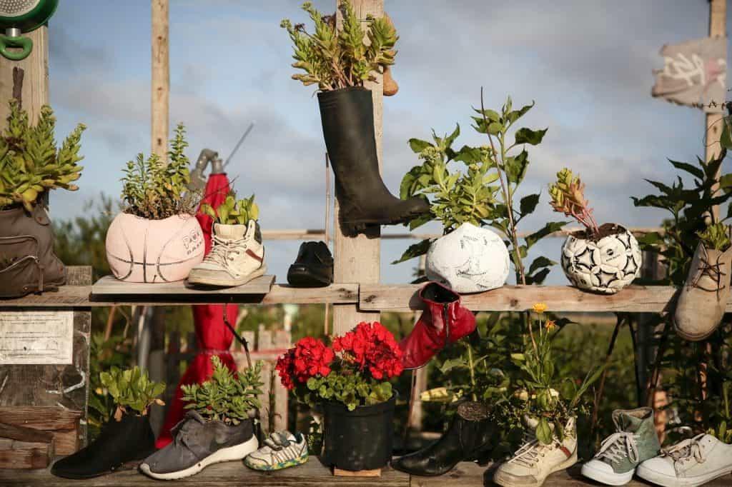 Benefits of container gardening