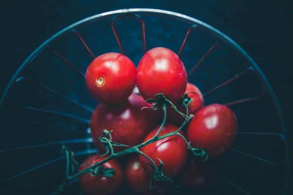 Can we grow tomatoes from seeds