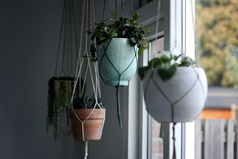 Hanging Balcony Garden
