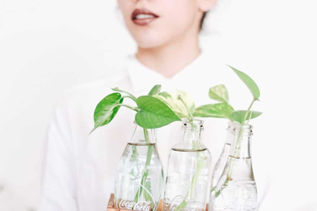 Common hydroponic systems