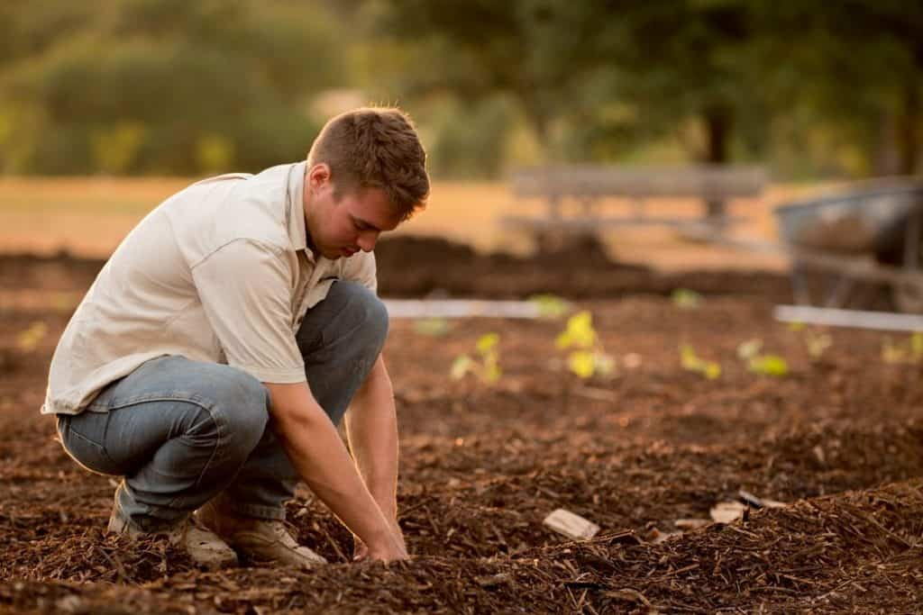 Man preparing gardening soil