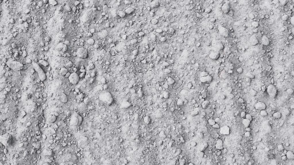 Best Sandy Soil For Growing Plants