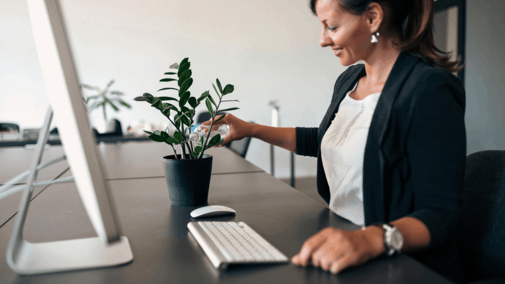 Which Plants can grow in an Office