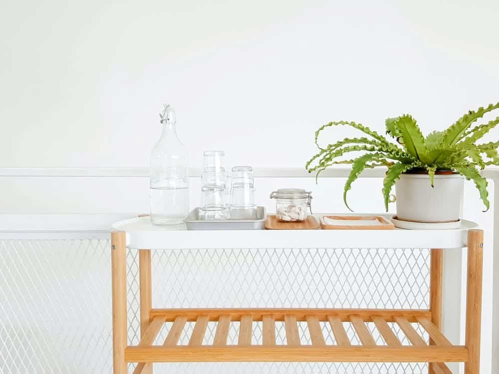 How to water houseplants while away
