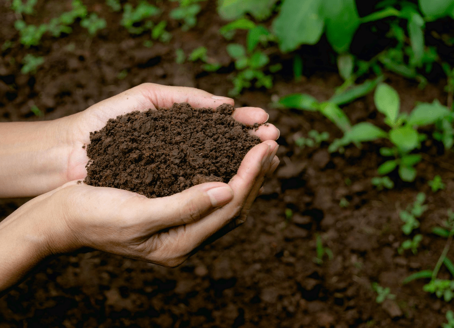 Improve Soil for Gardening