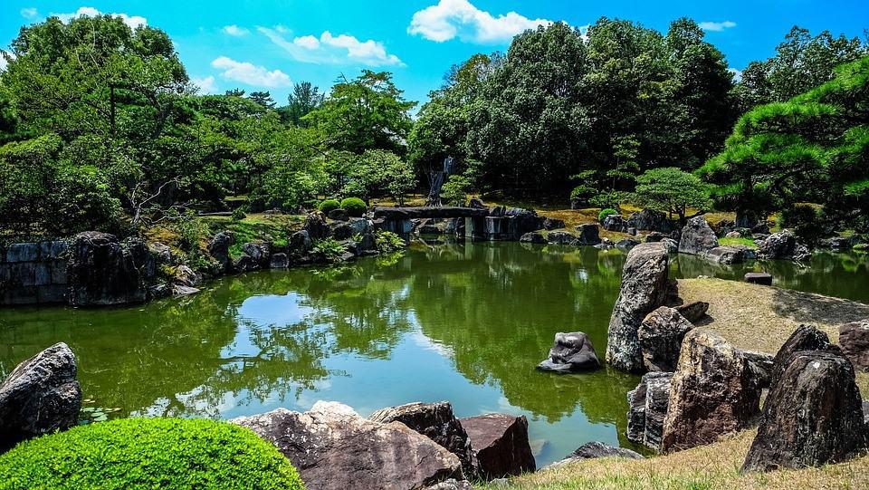 a beautiful Japanese Garden