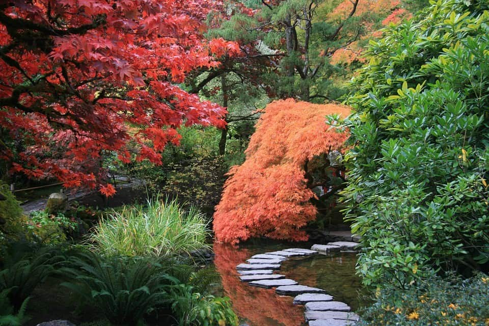 Purpose of a Japanese Garden