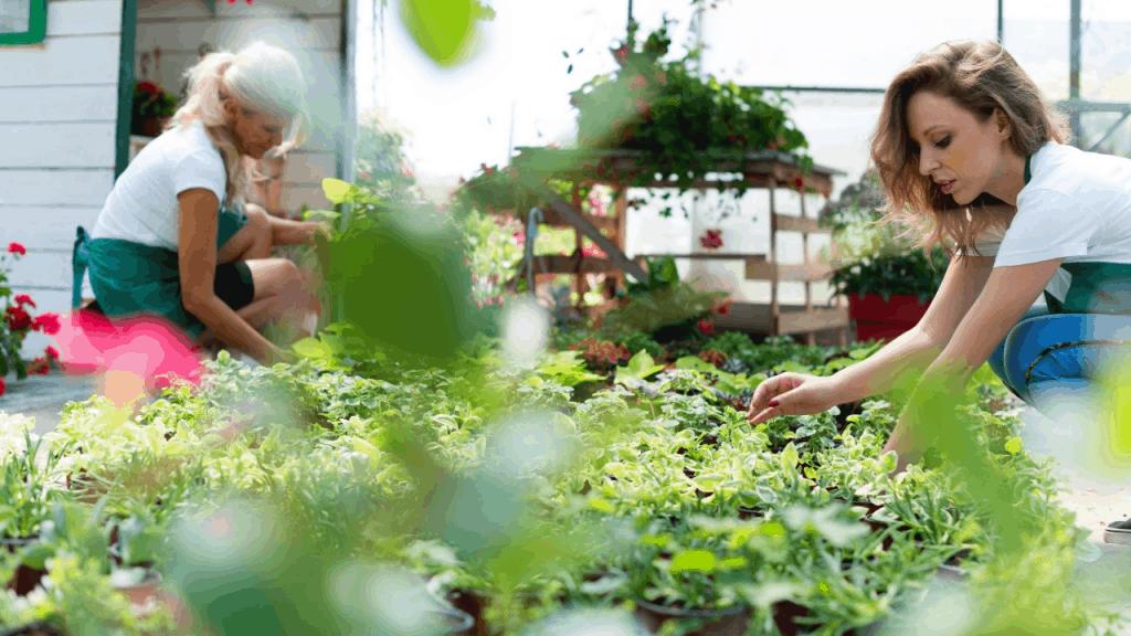 Start a Gardening Business With No Money
