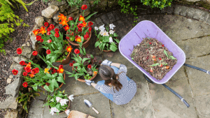 how to clean your garden