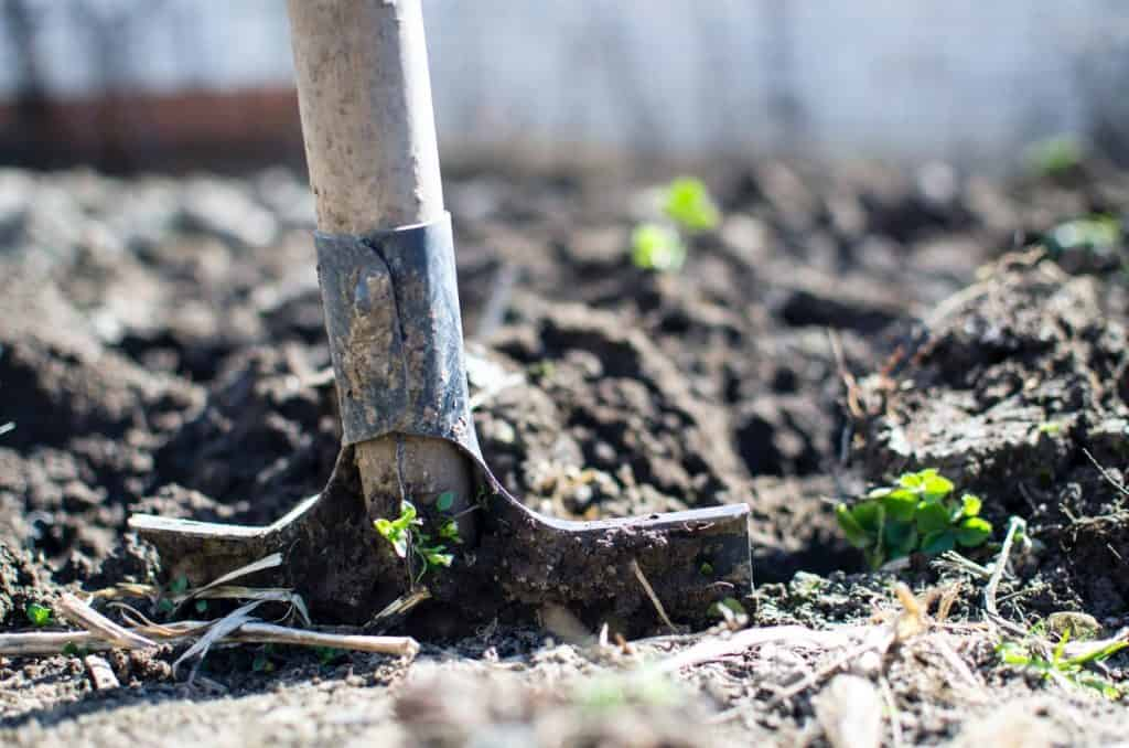 how to add calcium to soil