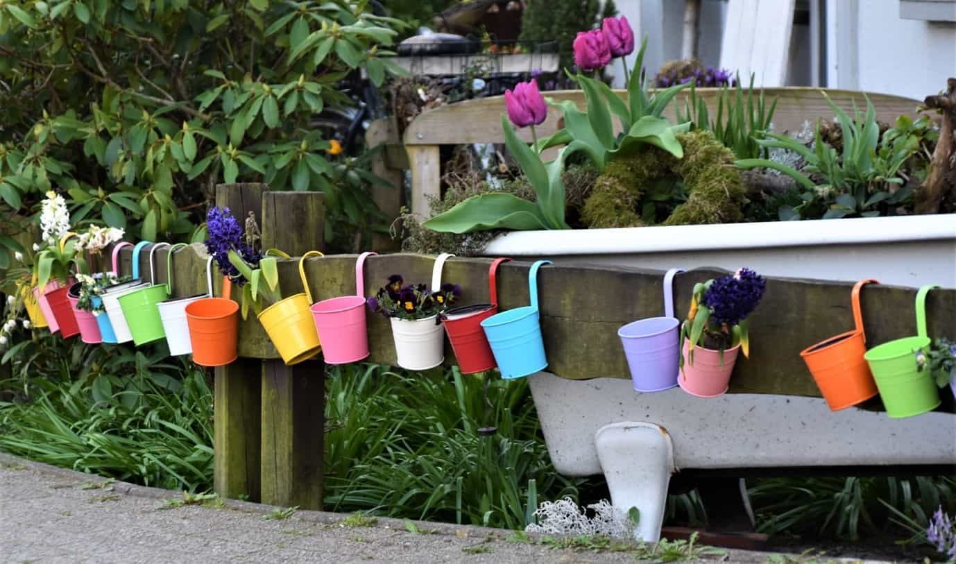 Best pots for balcony gardening