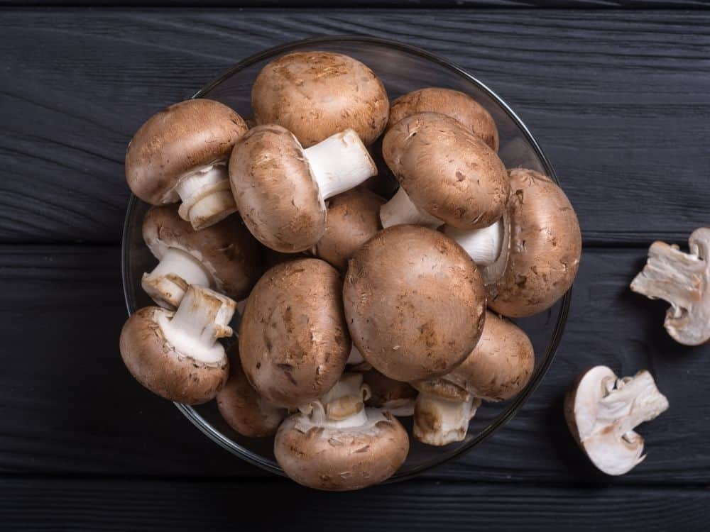 beneficial mushrooms in garden