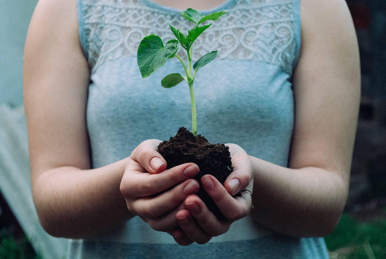 topsoil for gardening
