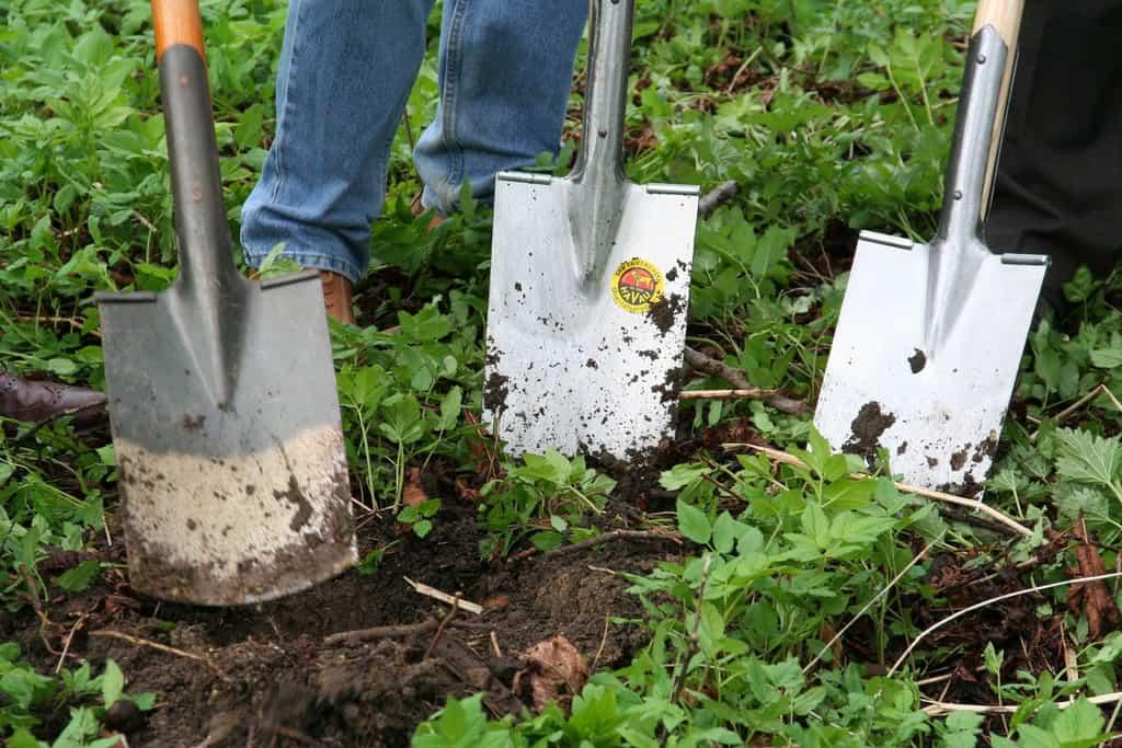 How to turn bad soil into good soil