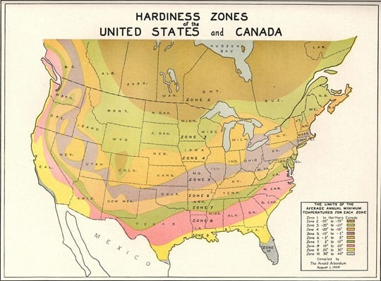 Plant Zones in the USA