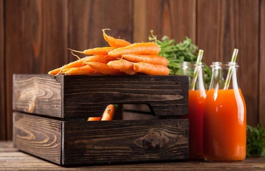 Storing Carrots From Garden