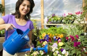 How to purify water for gardening