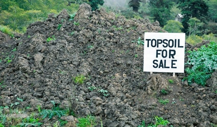 topsoil for growing plants