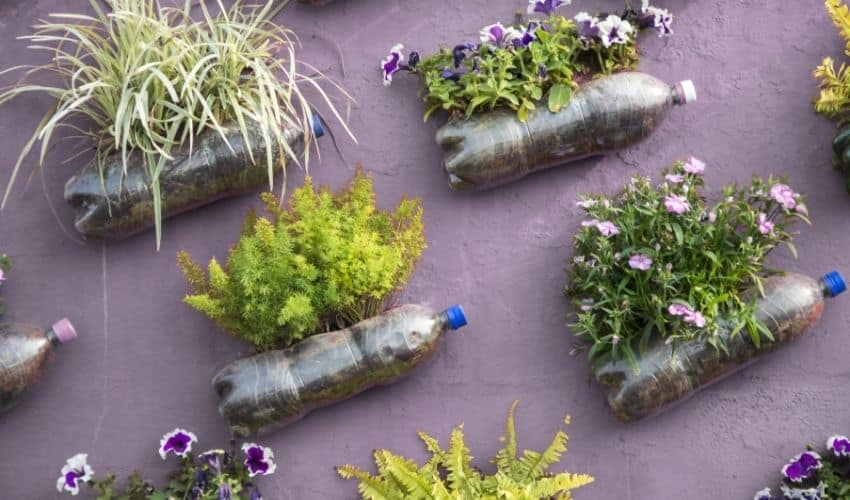 Water bottle gardening