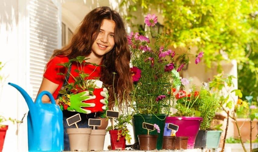 how to maintain balcony garden