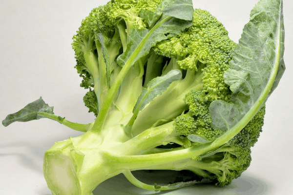 How many broccoli can you plant in a square foot
